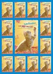 Jahreslosung 2019 - Aufkleber-Gruß-Karten, 4 Stück (Katze)