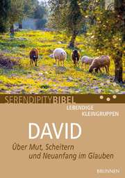 Serendipity Bibel: David