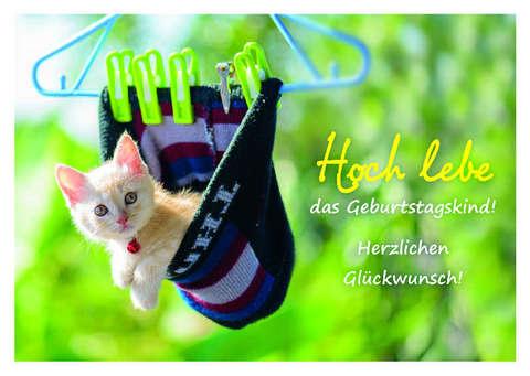 Hoch Lebe Das Geburtstagskind Postkarte Sendbuchde